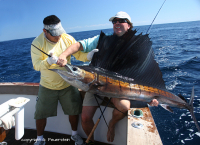 sailfish 100lbs.jpg