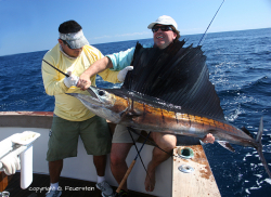 100 lbs Marlin on fly caught by Günter Feuerstein