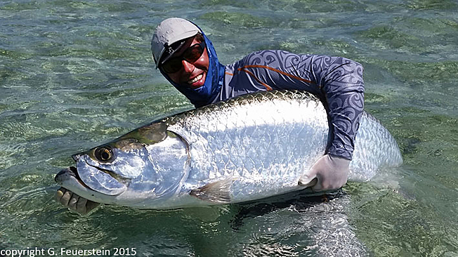 Fly fishing blog no1 by guenter feuerstein fly casting for Tarpon fly fishing