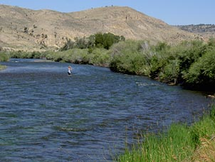 Fly Fishing Beaverhead River