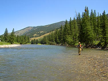 Fly Fishing Gallatin River