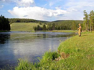 Fly Fishing Yellowstone River